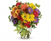 Rogers Flowers - Make a Wish - Shirley's Flowers &amp; Gifts