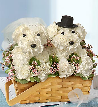 1 800 Flowers-Love you Fur-ever in Woodbridge VA, Lake Ridge Florist