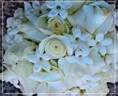 3123 in Wilkinsburg, Pennsylvania, James Flower & Gift Shoppe