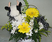 Moo the cow in Katy TX, Kay-Tee Florist on Mason Road