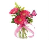 Thoughtful Gerbera Bouquet