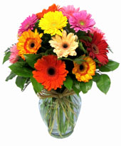 Happiest Gerbera's in Las Vegas NV, A French Bouquet