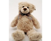 Beige Teddy Bear Local and Nationwide Guaranteed Delivery - GoFlorist.com