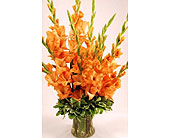 Ten-Orange-Stems-of-Gladiolas in San Clemente CA, Beach City Florist