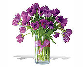 Spring-Tulips--Premium-Purple in San Clemente CA, Beach City Florist