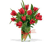 Spring-Tulips--Red in San Clemente CA, Beach City Florist