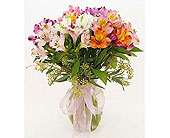 Over-the-Rainbow-All-Colorful-Mix-of-Alstroemeria in San Clemente CA, Beach City Florist