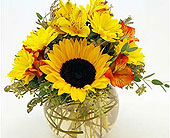 Flowers Depot Sunshine-in-a-Vase in San Clemente CA, Beach City Florist