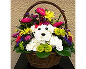 Coronado Flowers - Adorable-Dog - The Floral Gallery