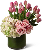 Delightful Dream in Nationwide MI, Wesley Berry Florist, Inc.