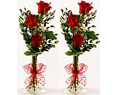 Red Roses 2for1 Special   in San Clemente CA, Beach City Florist