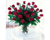 2 dozen red roses in St. Louis, Missouri, Alex Waldbart Florist