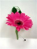 Gerbera Daisy Boutonniere in Belleville ON, Live, Love and Laugh Flowers, Antiques and Gifts