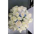Wedding-Brides-Bouquet in San Francisco, California, Hoogasian Flowers