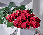 Dozen-Roses-Boxed in Mississauga ON, Mums Flowers