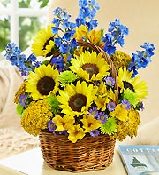 Sunny Basket in Port Orange FL, Port Orange Florist