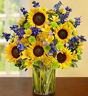 Sunny Days Vase in Port Orange FL, Port Orange Florist