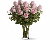 A Dozen Pink Roses in Zeeland, Michigan, Don's Flowers & Gifts