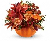 Autumn's Joy by Teleflora in Edmonton AB, Petals For Less Ltd.