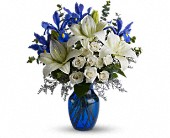 Blue Horizons in Lake Worth FL, Belle's Wonderland Orchids & Flowers