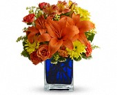 Summer Nights by Teleflora in Dallas TX, Dallas House of Flowers  800-873-0917