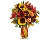 Teleflora's Autumn Beauty Bouquet in Edmonton AB, Petals For Less Ltd.