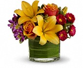 Teleflora's Blossoms of Joy in Houston TX, Azar Florist