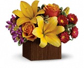 Teleflora's Full of Laughter in Burlington WI, gia bella Flowers and Gifts
