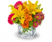 Homewood Flowers - Teleflora's Summertime Splash - Continental Florist