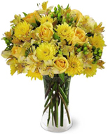 Sunny Day in Nationwide MI, Wesley Berry Florist, Inc.