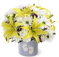 FTD� Sweet Dreams� Bouquet - Boy in Nationwide MI, Wesley Berry Florist, Inc.