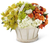 Sunny Surprise Basket in Nationwide MI, Wesley Berry Florist, Inc.