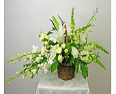 Radiant Light Funeral Basket in Washington DC, Palace Florists