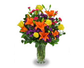 Kaysville Flowers - Brilliant Blossoms - Jimmy's Flower Shop, Inc.