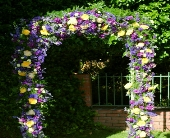 Floral Arch in Campbell, California, Jeannettes Flowers