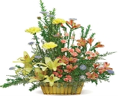 Sunshine Basket in Nationwide MI, Wesley Berry Florist, Inc.
