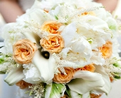 Peace & White Bridal Bouquet in Knoxville, Tennessee, The Flower Pot