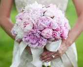 Pink Peony Bride in Knoxville, Tennessee, The Flower Pot