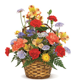Carnival of Color in Nationwide MI, Wesley Berry Florist, Inc.