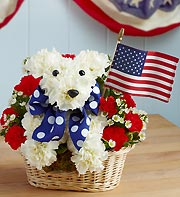 1 800 Flowers- Yankee Doodle Dog in Woodbridge VA, Lake Ridge Florist