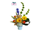 My Little Baby Bear for Boy in Dallas TX, In Bloom Flowers, Gifts and More