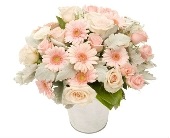 Bucket of Joy in florist flowers Australia, Teleflora