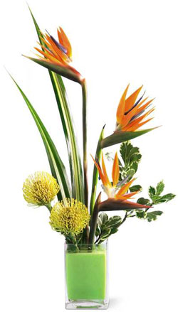 FTD� Tropical Bright� Arrangement in Nationwide MI, Wesley Berry Florist, Inc.