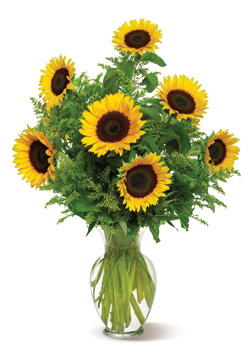 Snazzy Sunflowers in Nationwide MI, Wesley Berry Florist, Inc.