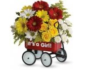 Baby Girl Wow Wagon in Smyrna GA, Floral Creations Florist
