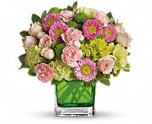 Make Her Day by Teleflora in Ammon ID, Petal Passion