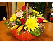 Pumpkin basket in Melbourne FL, Paradise Beach Florist & Gifts