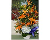 Sympathy - Exotic Basket Arrangement in Houston TX, Athas Florist