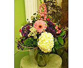 Elegant Hydrangeas in Melbourne, Florida, Paradise Beach Florist & Gifts