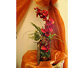 Silk orchid in glass container in Melbourne FL, Paradise Beach Florist & Gifts